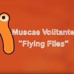 Mouches Volantes - video titel blad